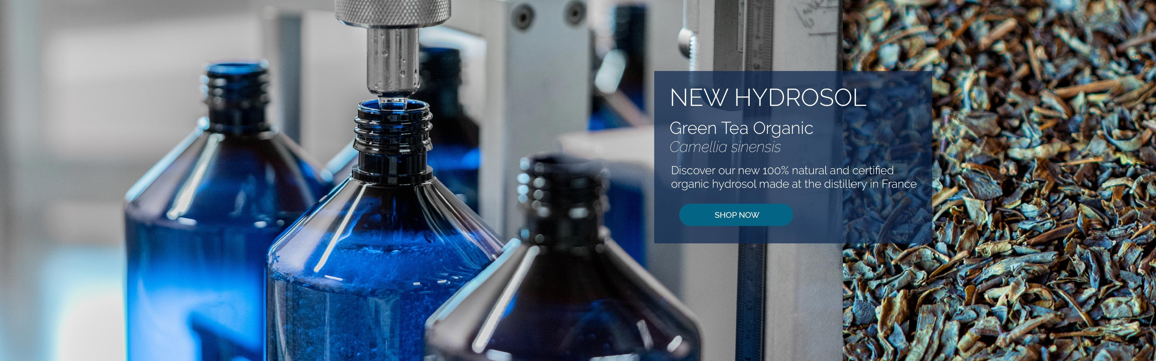 Green Tea Organic Hydrosol. Discover our 100% natural and organic hydrosol made at the Distillery in France.